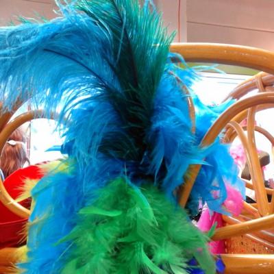 Open Plaats - tweedehands sjaals en pluimen voor carnaval